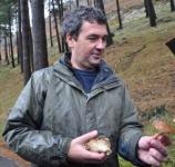 Uitleg over paddenstoelen