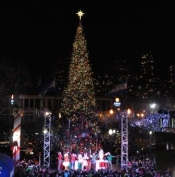Kerstboom San Francisco