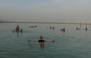 Dobberen in de Dode Zee