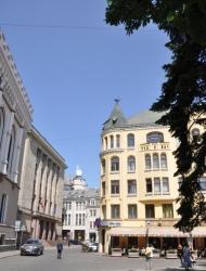 Puur op reis: Riga Cat House