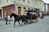 Koetsen in Brugge