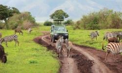 Serengeti-Shutterstock-PRMatoketours