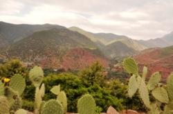 Bergen en natuur in Marokko