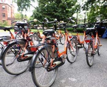 Veel te zienHollands rondje fietsen in...