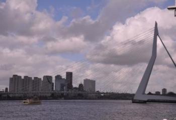 Rotterdam ©puuropreis