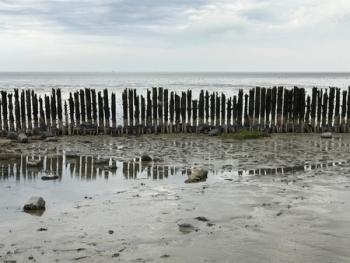 Waddenzee ©puuropreis.nl