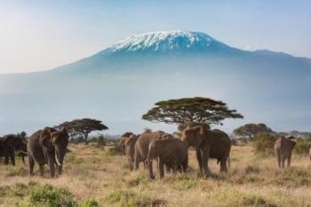 Kilimanjaro-Shutterstock-PRMatoketours