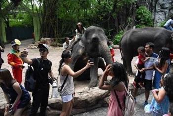 Selfies met wilde dieren@worldanimalprotection