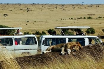 Safari ©pr-anvr