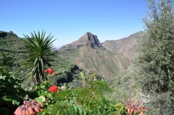Natuur op Gran Canaria