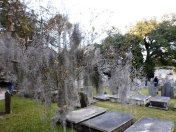 Begraafplaats Charleston©Puuropreis
