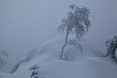 nationaal park Koli, Noord-Karelië