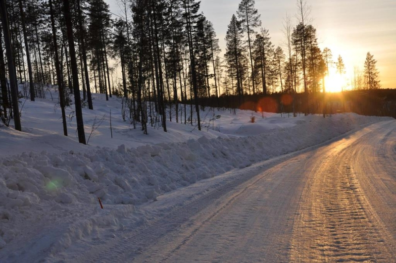 Sneeuwlandschap in Lapland