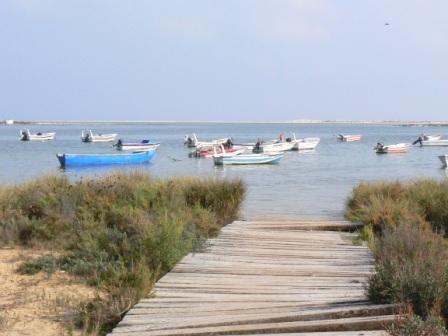 Puur op reis: Algarve